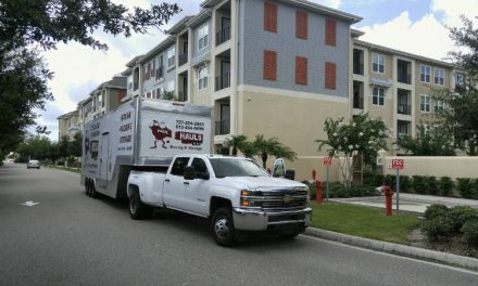 St Petersburg Movers- Trust The Best And Forget The Rest!