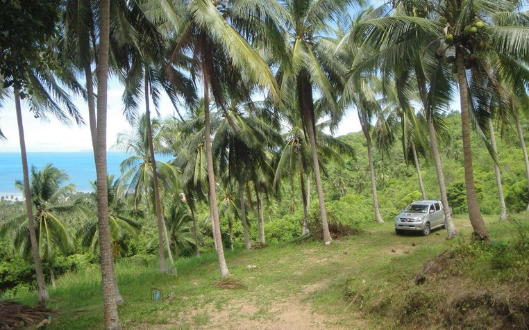 Buy Land Koh Samui