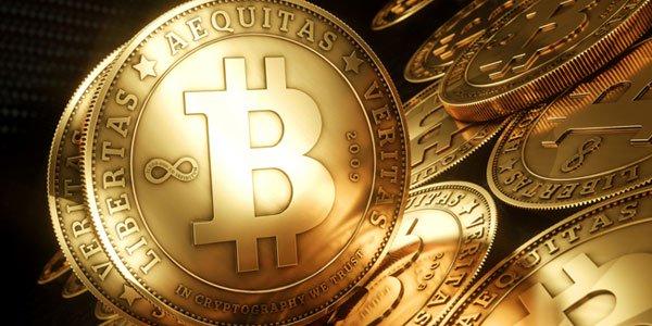 bitcoin popularity